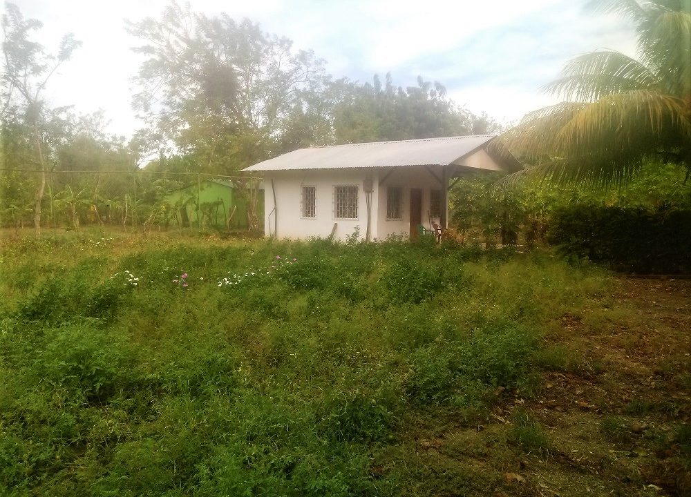 Ometepe island houses and land to sow (1)