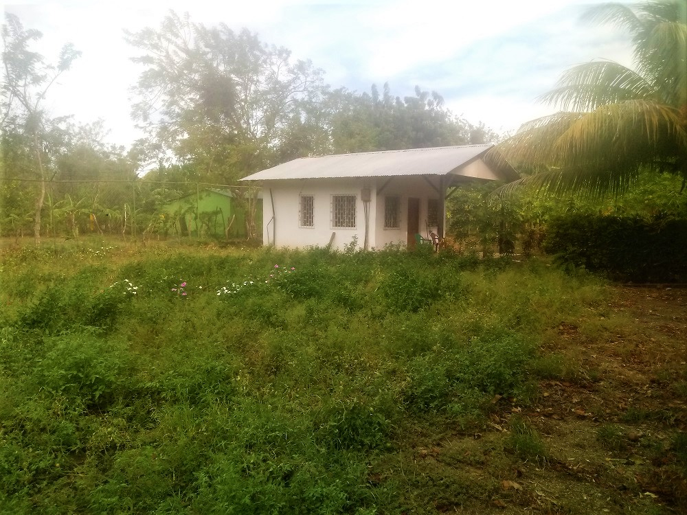 09-340 SB. Land to Sow with House, Ometepe Island, Rivas