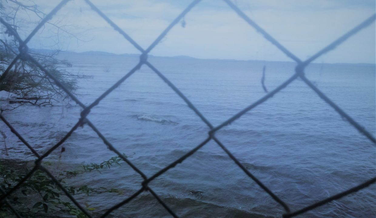 Ometepe island houses and land to sow (6)